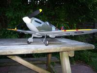 Name: 100_1137.jpg