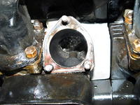 Name: Picture or Video 013.jpg