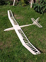 Name: Picture or Video 106.jpg Views: 156 Size: 299.1 KB Description: Flair Albatross.