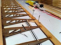 Name: IMG_3695.jpg