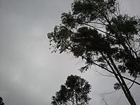 Name: 2012-05-27 17.29.26.jpg Views: 93 Size: 249.5 KB Description: epicfail