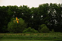 Name: flying 2259.jpg Views: 48 Size: 144.8 KB Description: