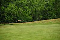 Name: flying 2267.jpg Views: 46 Size: 183.9 KB Description: