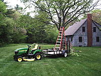 Name: Tree facelift 5-26-11 018.jpg
