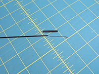 Name: DSCN3554.jpg