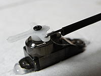 Name: IMGP0616.jpg