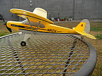Name: Super Cub.jpg