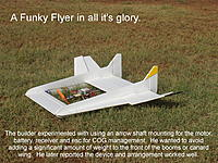 Name: FunkyFlier.jpg