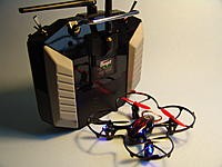 Name: DSC07350.jpg