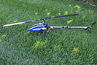 Name: DSC07225.jpg