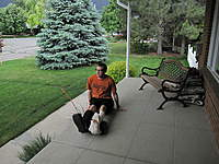 Name: Scooter boards.jpg