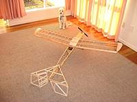 Name: Copy of IMG_0529.jpg