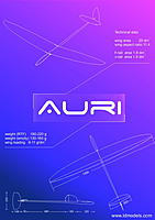 Name: auri_schem.jpg
