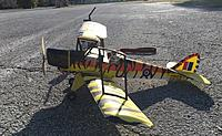 Name: pico Tiger Moth pic3 01-30-2021.jpg