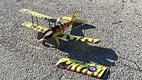 Name: pico Tiger Moth pic5 01-30-2021.jpg