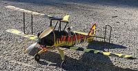 Name: pico Tiger Moth pic8 01-30-2021.jpg