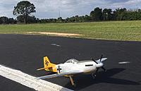 Name: Dallas Doll P-51D Mustang in GERMAN Captured Clothing3 10-17-2021.jpg Views: 5 Size: 315.3 KB Description: