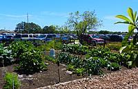 Name: Garden2.jpg Views: 79 Size: 309.3 KB Description: