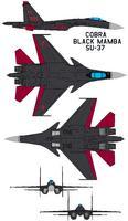 Name: COBRA SU-37.jpg Views: 816 Size: 73.9 KB Description:
