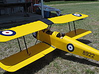 Name: Tiger Moth from Phil Hart_1.JPG