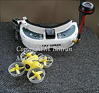 Name: 20170514_inductrix fpv and fatshark hd3_signed.jpg