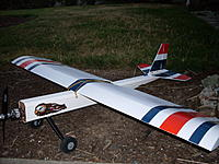 Name: Electric Goose 002.jpg
