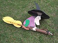Name: Witch Hazel 2.JPG Views: 229 Size: 85.6 KB Description: