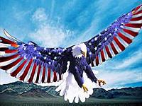 Name: Colbert_Eagle_Logo.jpg Views: 39 Size: 121.1 KB Description: