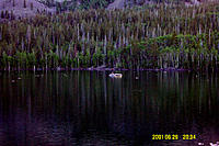 Name: Dcp_0318a.jpg