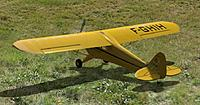 Name: Phoenix 4  Cub 100percent Crop.jpg Views: 2285 Size: 192.6 KB Description: