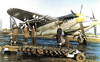 Name: Mosquito-FBVI-02-px800.jpg