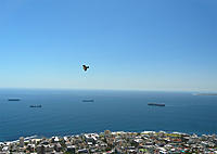 Name: Alula over Seapoint.jpg