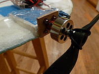 Name: P1000609.jpg