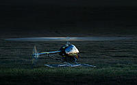 """Name: Trekker03 Wall.jpg Views: 53 Size: 147.3 KB Description: Align 800e DFC Trekker  5'11"""" Rotor"""