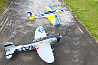 Name: DSC_8519.jpg