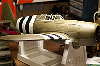Name: DSC_6875.jpg