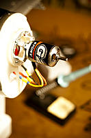 Name: DSC_6954.jpg