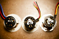 Name: DSC_6961.jpg