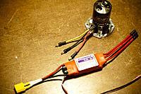 Name: DSC_6979.jpg