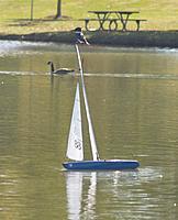 Name: 11-11-07 Sail (7).jpg Views: 132 Size: 66.3 KB Description: