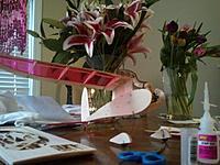 Name: 2011-02-16 16.49.43.jpg Views: 94 Size: 241.2 KB Description: