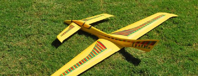 Jarel Aircraft Design Telos Slope Glider Review - RC Groups