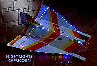 Name: Night Lights Capricorn.jpg