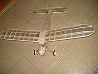 Name: DSC02156.jpg