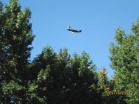 Name: Flying 9-19-09 013.jpg Views: 65 Size: 79.9 KB Description: