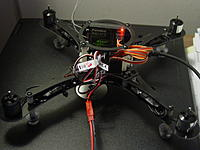 Name: DSC04802.jpg