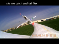 Name: Radian tail flex when hand caught.png Views: 203 Size: 217.1 KB Description: