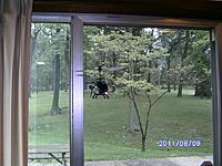 Name: PICT0445.jpg Views: 94 Size: 265.9 KB Description: