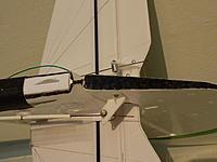 Name: tail feathers Radian.jpg Views: 91 Size: 190.6 KB Description: