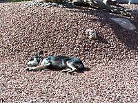 Name: 4022013 014.jpg